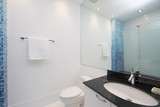 Blue bathroom with black oval counter-top and mosaic