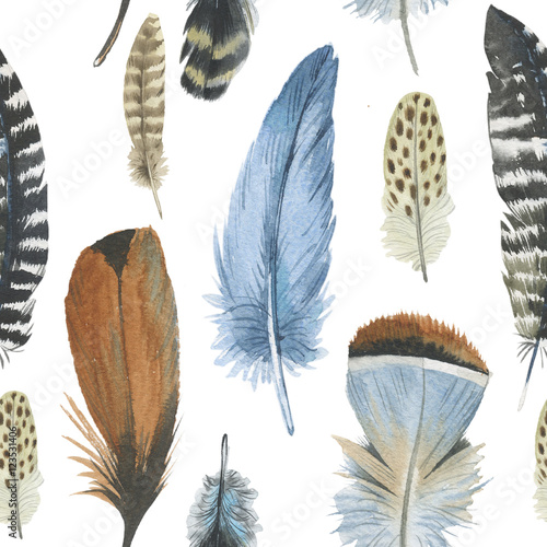 Watercolor bird feather pattern from wing isolated. Aquarelle feather for background, texture, wrapper pattern, frame or border. - 123531406