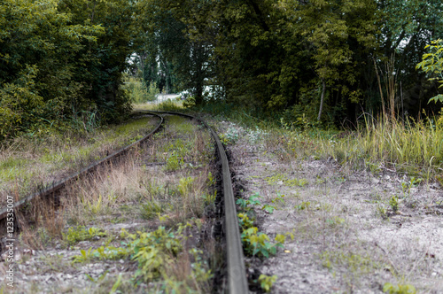 Tuinposter Weg in bos Old railway tracks and gravel leading into the infinite distance with selective focus