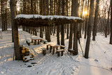 wooden gazebo in a snowy forest