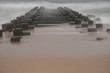 Wood Pilings on a stormy beach during Hurricane Matthew