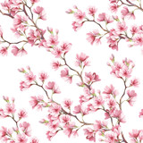 Seamless pattern with cherry blossoms. Watercolor illustration. - 123607616