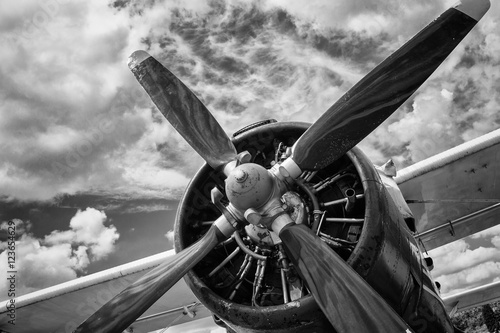 Plakát Close up of old airplane in black and white