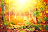 Autumn sunny forest. Blurred abstract nature background