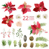 Poinsettia Flowers and Christmas Floral Elements - in Watercolor