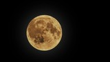 background for Halloween, the full moon
