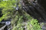 愛媛県内子町 小田深山渓谷 腰のばし橋