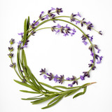 Fototapety wreath of lavender