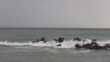 cold winter seascape