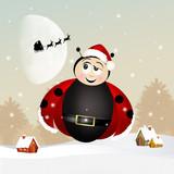 funny ladybug at Christmas