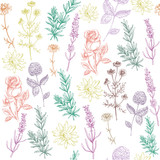 herbal seamless pattern natural cosmetics - 123912649