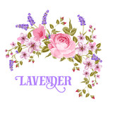 Fototapety The Lavender sign. Garland of red rose, pink sakura and violet lavender flowers in vintage style. Card with custom sign Lavender and flower frame isolated over white background. Vector illustration.