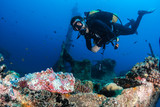 Diver with stonefish at shipwreck - 123938817