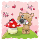Cute cartoon Teddy Bear with a camera