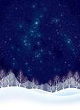 雪国の星空