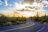 Amazing Sunset Image of Saguaro National Park - 123972005