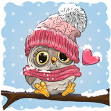 Owl in a knitted cap