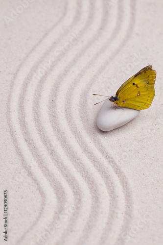 Foto op Canvas Zen An yellow butterfly in a zen garden with white sand