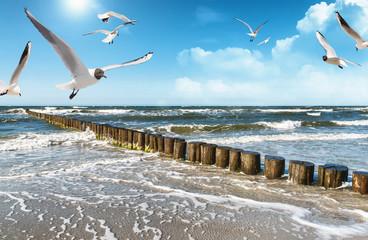 Ostseeküste v2