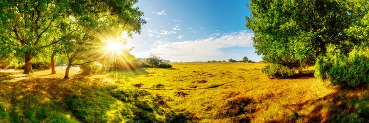 Fototapeta słoneczna panorama
