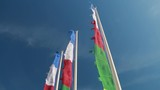 Colored flags waving in the wind