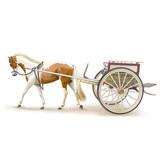 Horse tanga