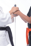 Hands and Martial Arts / Martial arts athletes hold with their hands a sword