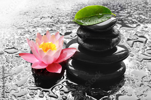 Water drops on black spa stones with Lily flower