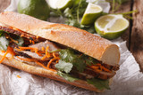Vietnamese sandwich with cilantro and carrot close-up. horizontal