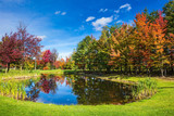 Charming oval pond in the picturesque park