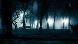 Snowfall in night park