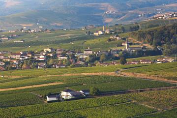 Village of Odenas at sunrise, Beaujolais land, France