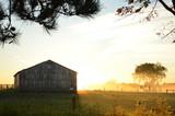 Sunrise behind a barn on a foggy morning