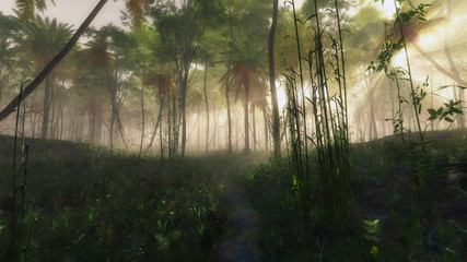 Pathway in foggy jungle with sun rays.