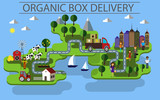 organic box delivery