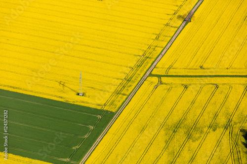 Fotobehang Meloen Luftaufnahme von Feldern in Norddeutschland