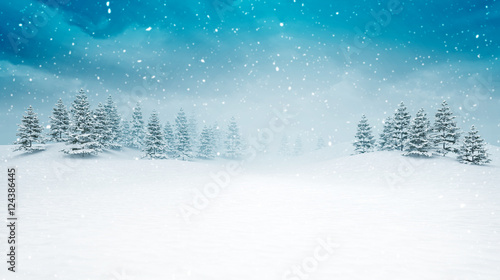 Foto op Canvas Wit snow covered open winter landscape at snowfall