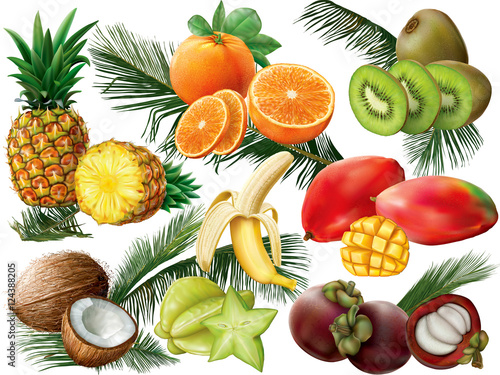 Tropical fruits with palm leaves