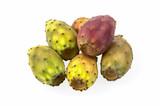 Fruits of Opuntia ficus-indica