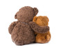 two teddy bear hugging isolated