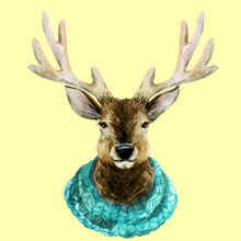 Aquarell stattlicher Hirsch