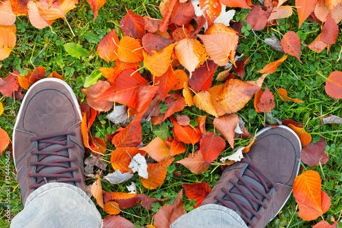 Fotobehang Tuin Beine und Herbstschuhe auf Laub und Gras