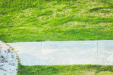 Fototapety Background of a green grass