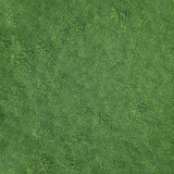 Fototapety Field of soft grass, top view