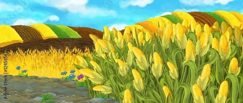 Papiers peints Jaune Cartoon nature scene - farm fields - empty stage for different usage - illustration for children