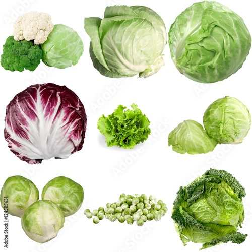 Poster Cabbage.