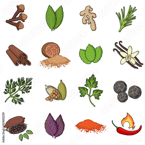 Herb and spices set icons in cartoon style. Big collection herb and spices vector symbol stock illustration