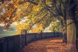 Autumn landscape, Krakow, Poland, Vistula river boulevards park