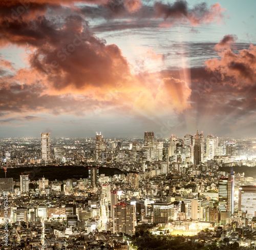 Poster, Tablou Tokyo, Japan. Beautiful aerial view of city buildings at night