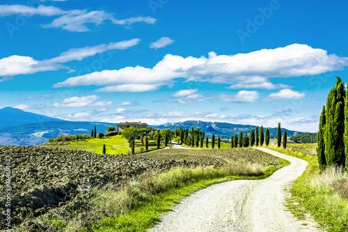 Fototapeta Beautiful landscape in Tuscany